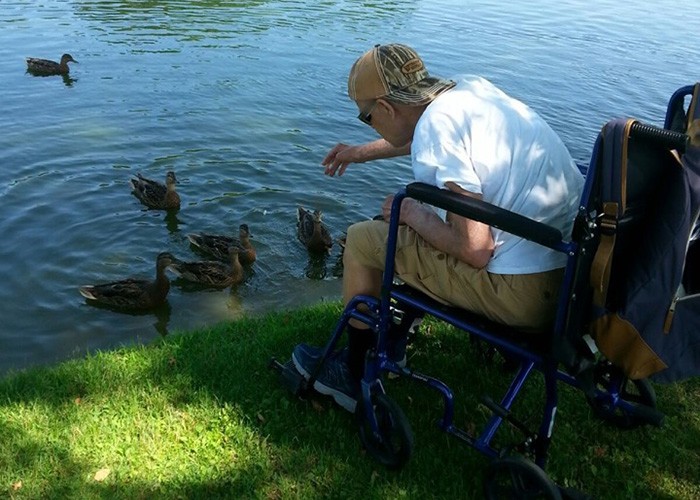 Community Habilitation Program Feeding the Ducks